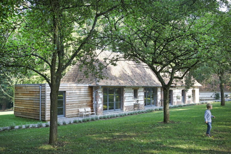 Baie de Somme: a nest for families hidden away in the woods