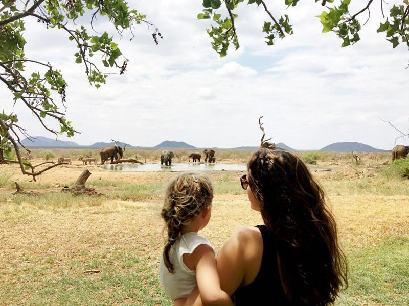 Afrique du Sud : nos conseils pour organiser un safari en famille