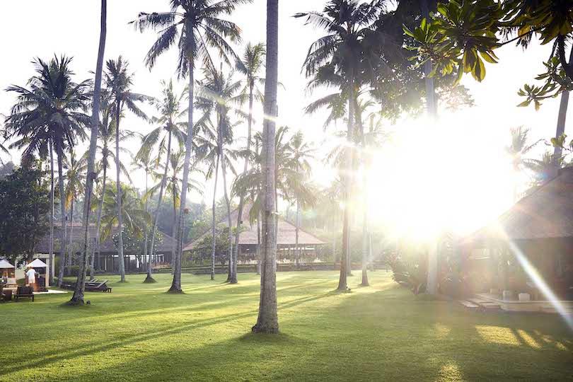Alila Manggis lever soleil