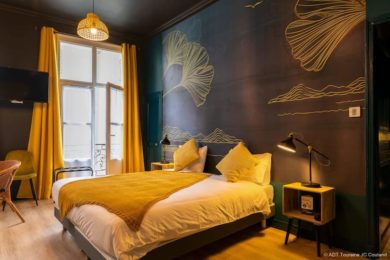 hotelcygne7leslouves
